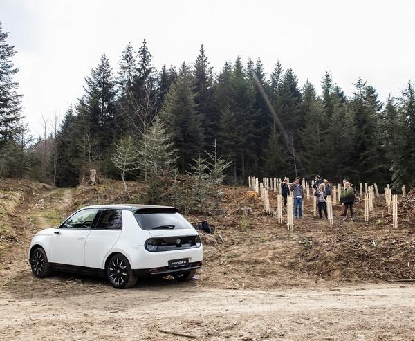 Home - foresting switzerland by honda